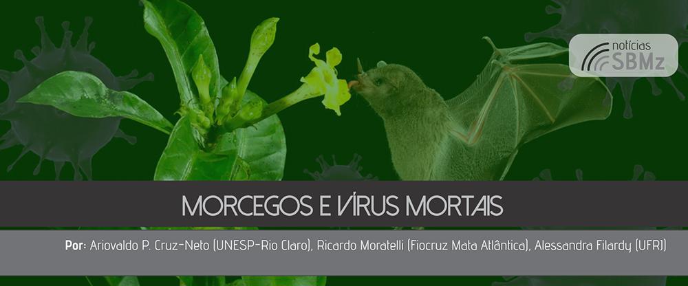 Morcegos e Vírus Mortais